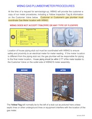 Wheeler Basin Natural Gas Company Meter Procedures